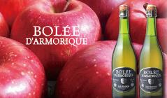 BOLEE DARMORIQUE ブルターニュ産シードルのセールをチェック