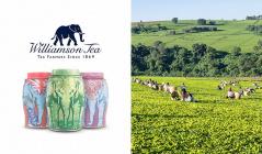英国老舗高級紅茶ブランド -WILLIAMSON TEA-のセールをチェック