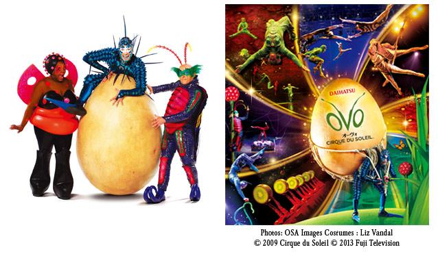 CIRQUE DU SOLEIL「OVO」シルク・ドゥ・ソレイユ「オーヴォ」名古屋公演のセールをチェック